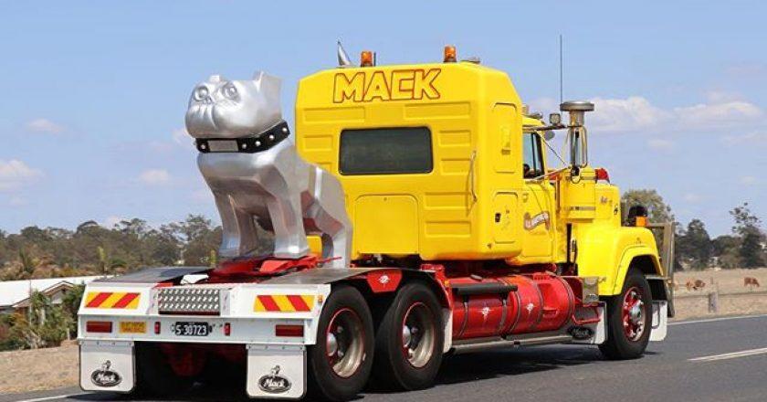 the trucking world onInstagram