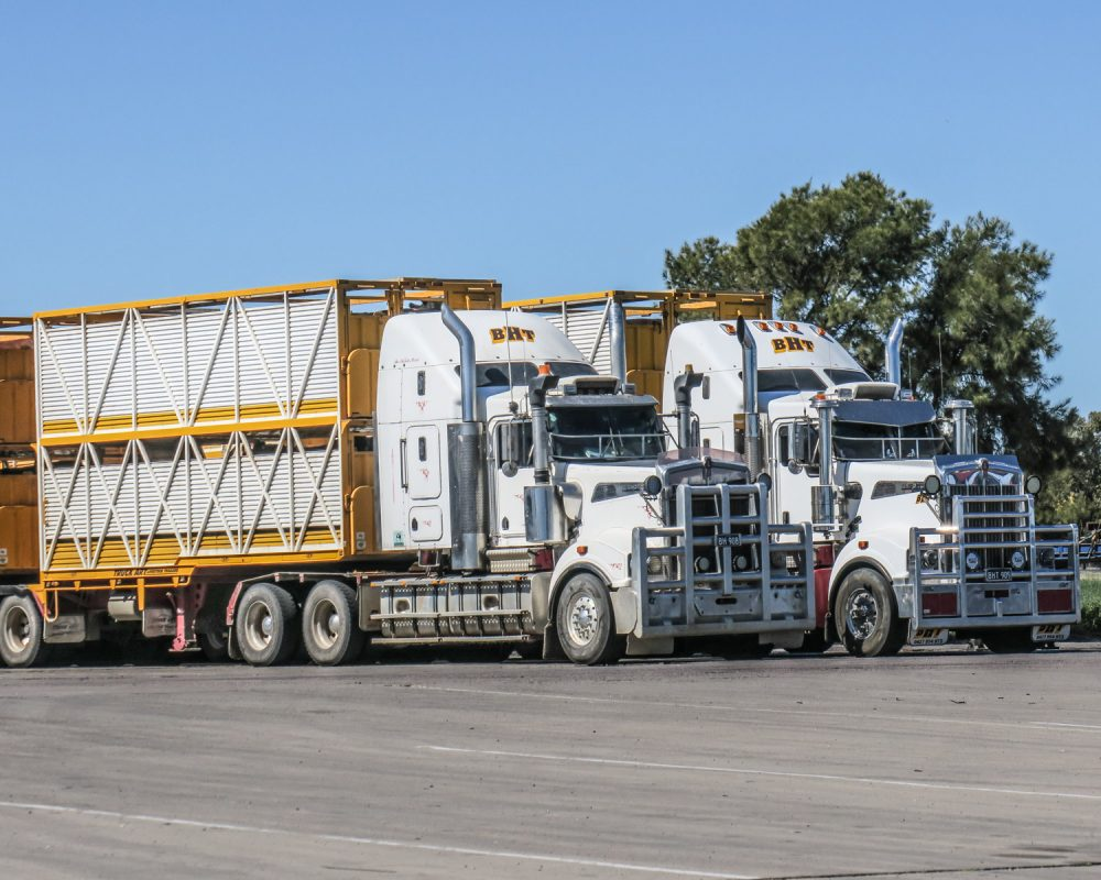 heavy vehicle law reform; have we missed the mark?